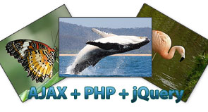 ajax_image_load